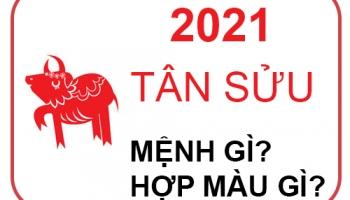 Năm 2021 Mệnh Gì? Năm Con Gì? Hợp Màu Nào? Hợp Với Tuổi Nào Nhất?