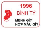 Sinh Năm 1996 Mệnh Gì?