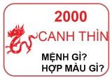 Sinh Năm 2000 Mệnh Gì?