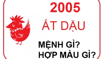 Sinh Năm 2005 Mệnh Gì?
