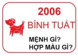 Sinh Năm 2006 Mệnh Gì?